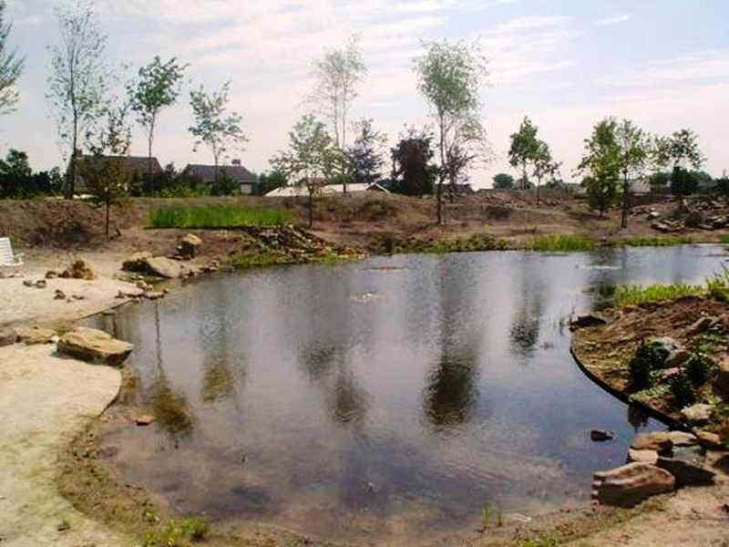 Natuurlijke vijvers best een natuurlijke vijver with for Natuurlijke vijver maken