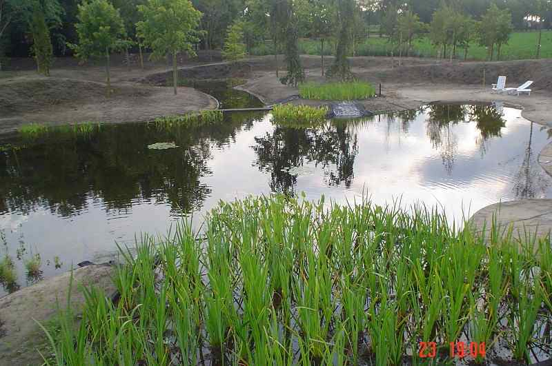 Zwemvijvers corne de bont hoveniers for Vijverpomp voor grote vijver