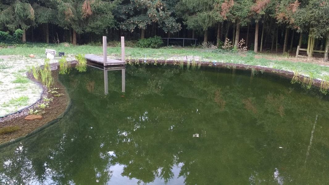 Zwemvijvers corne de bont hoveniers